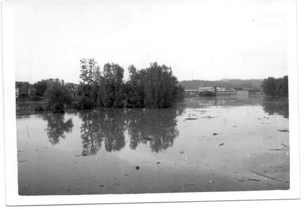 Anoia 1971